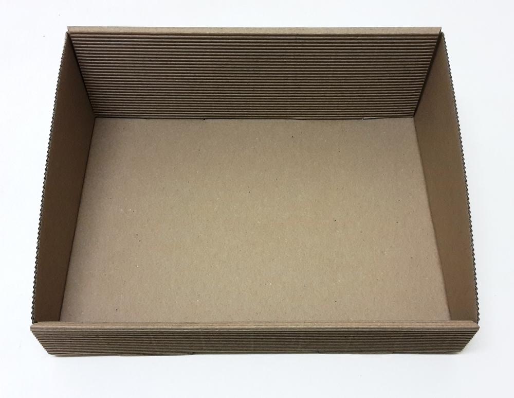 Fruitschaal karton rechthoekig